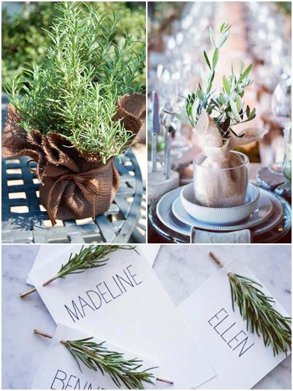 Wedding Philippines - Go Green Giveaways - Plant Wedding Favors 05 ...