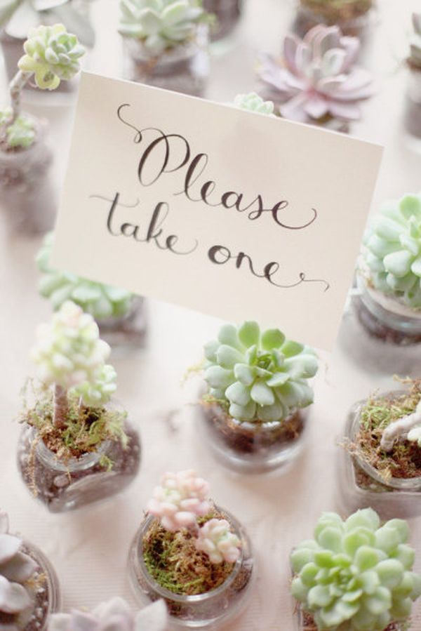Plant And Herb Wedding Favors Wedding Philippines Wedding