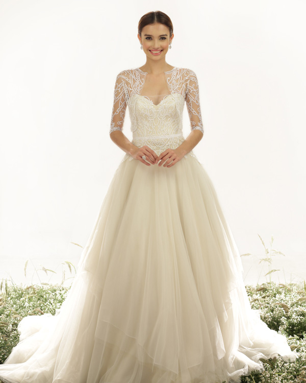 Wedding Dresses Wedding Gowns Wedding Wear - Wedding Dresses